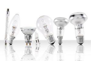 Какие лампы лучше выбрать: светодиодные или галогеновые?