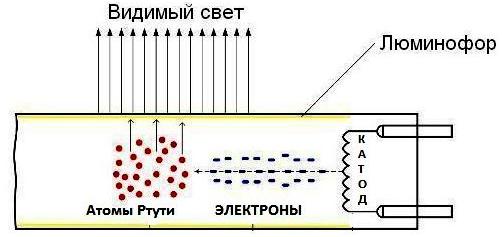 Устройство и схема подключения люминесцентной лампы